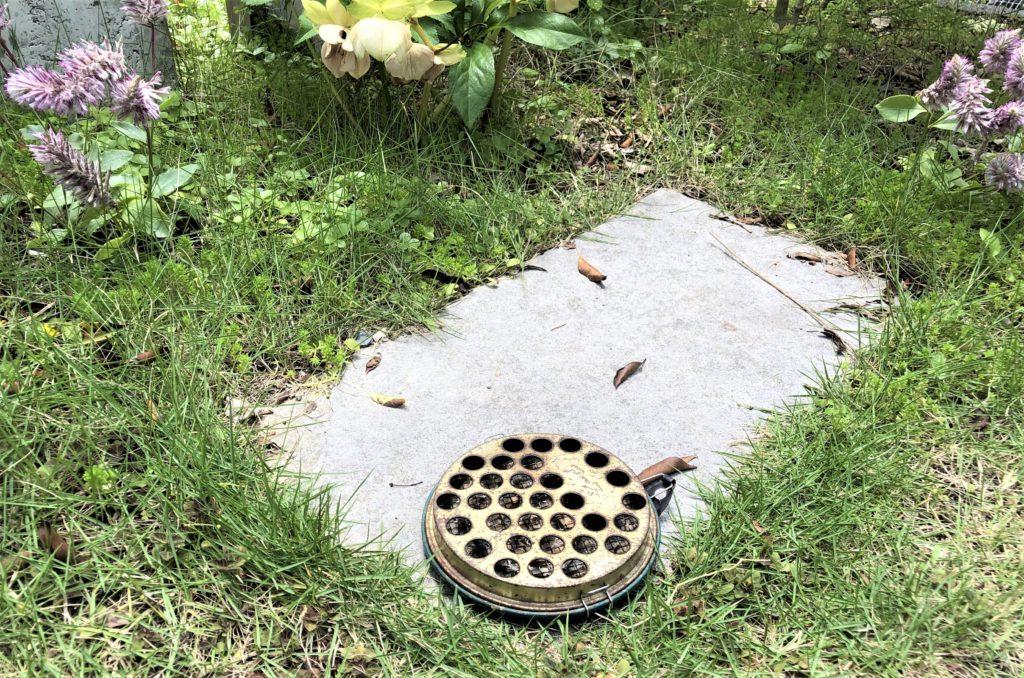 ブログ「モノオス」菊花せんこうを焚いている線香入れを庭に置いている状態を撮った画像