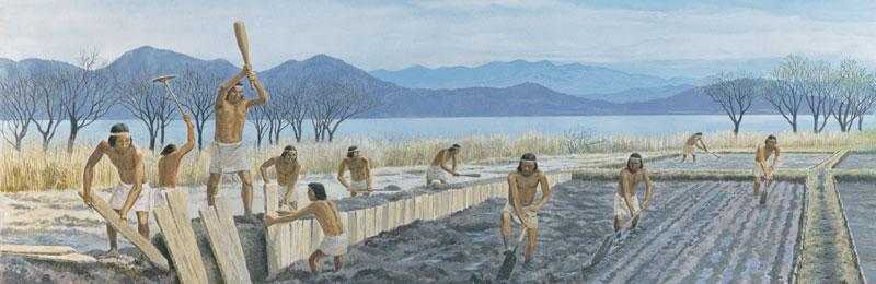 ブログ「モノオス」弥生時代にスギを水田の矢板として使っている絵の画像