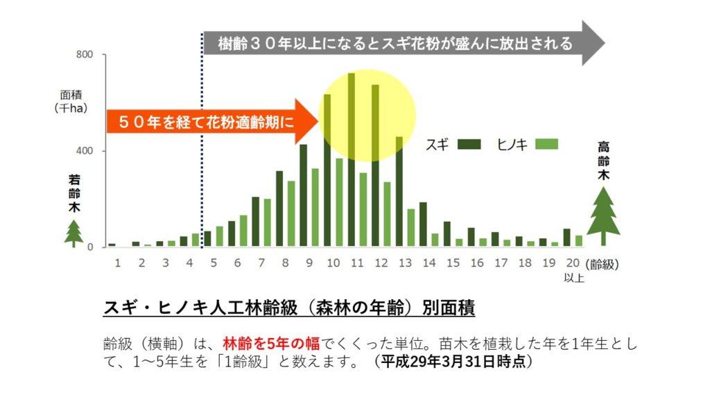 ブログ「モノオス」林野庁の統計(スギ・ヒノキ人工林齢級(森林の年齢)別面積)に樹齢適齢期を加えてまとめた図